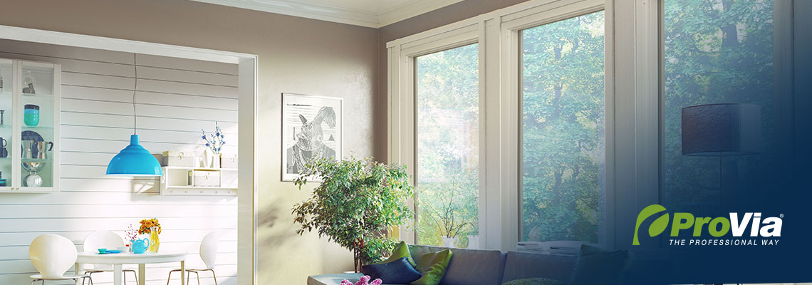 Aspect Picture Windows Living Room