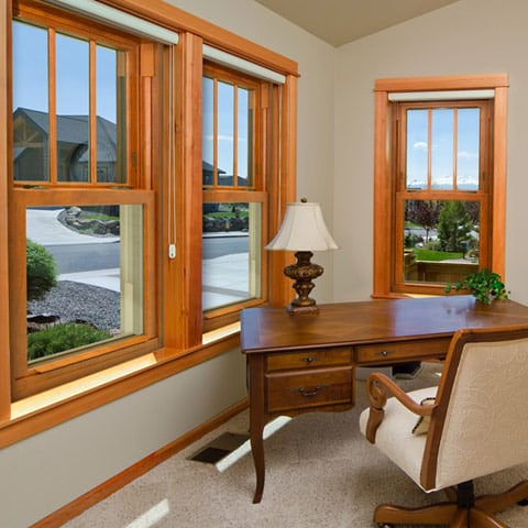 double hung windows by ProVia
